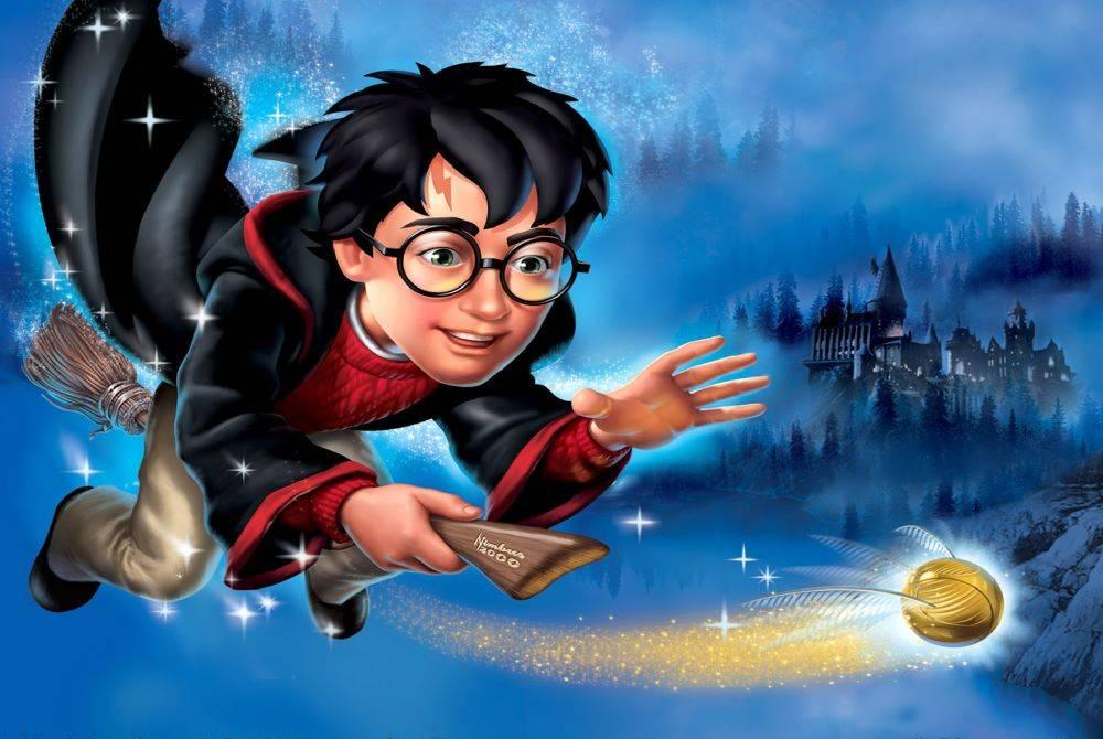 Thinpo - Harry Potter ve Felsefe Taşı Oyunu