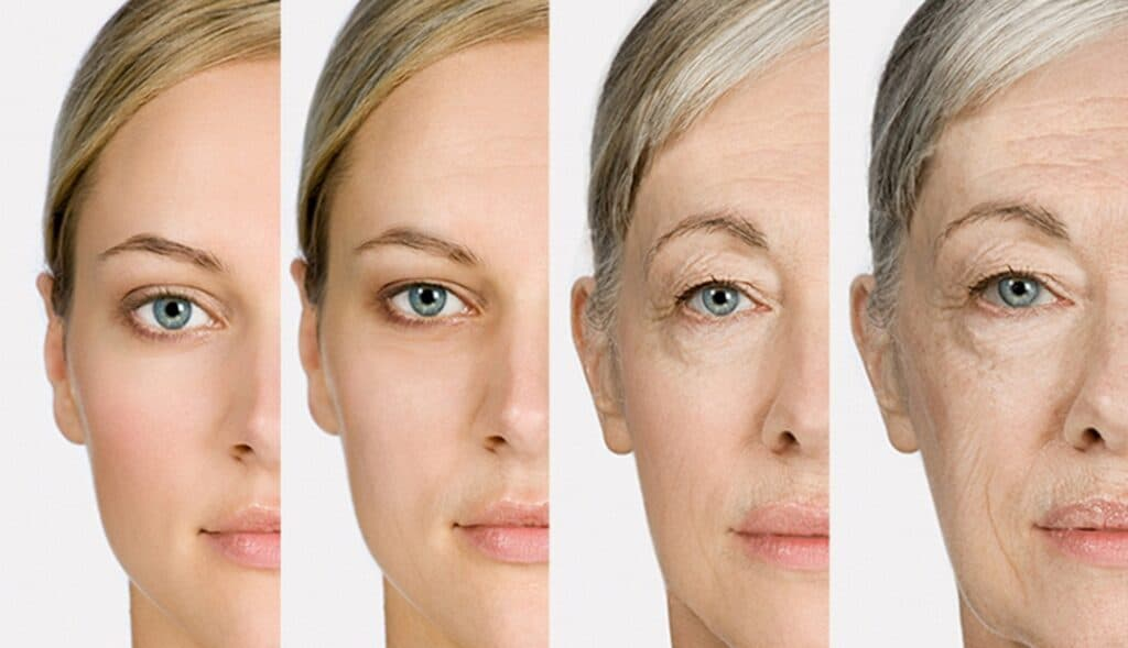 Thinpo - Yaşlanma Nasıl Önlenir? Lifespan.io Nedir?